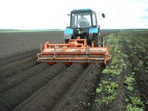 Господдержка на 1 га земельных угодий в странах Евросоюза в среднем оценивается примерно в $800, в Беларуси расходы бюджета составляют около $200